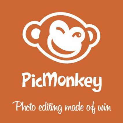 Ingyenes képszerkesztő –  Picmonkey